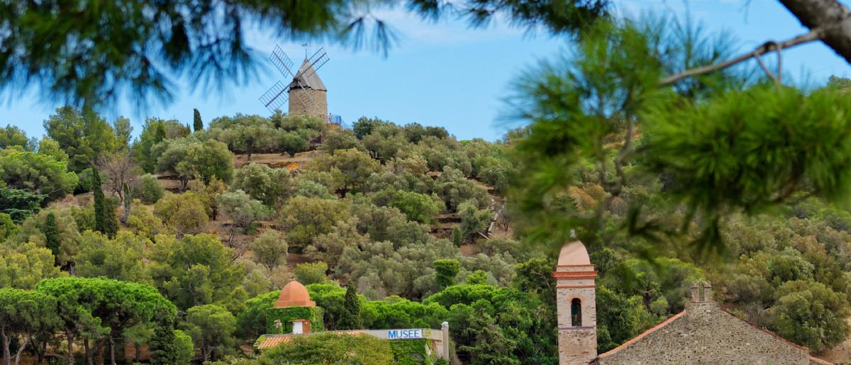 Vue du moulin de Collioure depuis le château royal